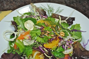 Red and Green Cabbage Salad with Fennel
