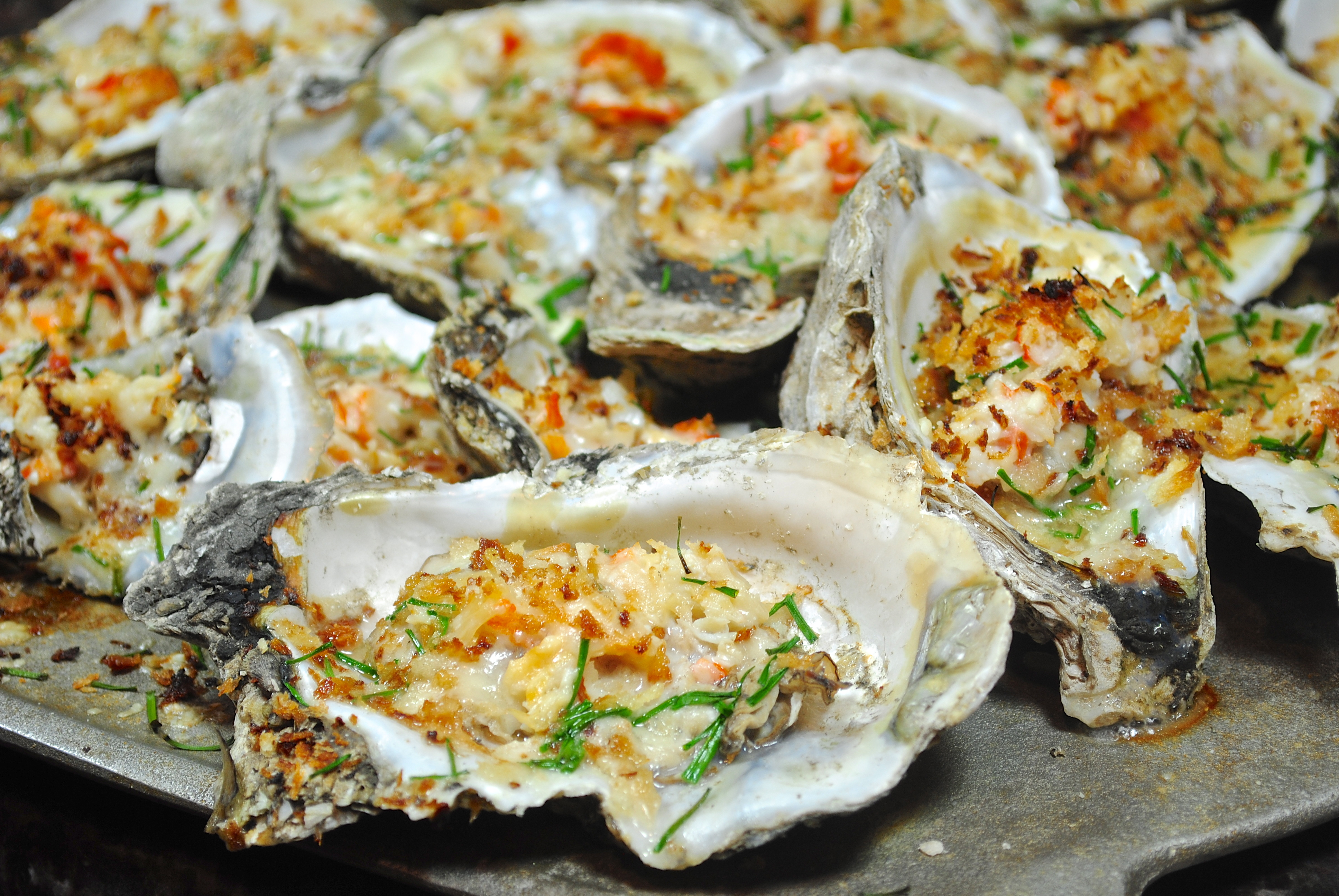Parmesan Crab Grilled Oysters «