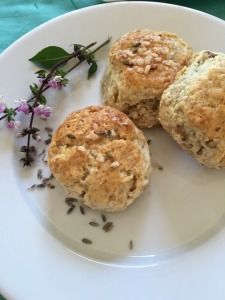 Walnut Lavender Scones