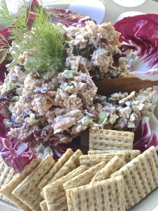 Smoked Chicken Salad with Cranberries and Roasted Pecans